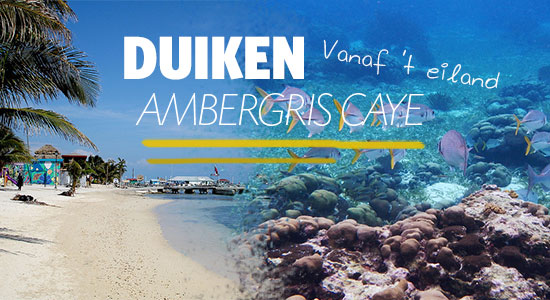 duiken-ambergris-caye-teaser