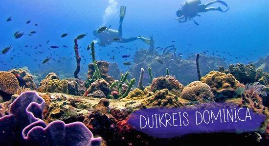 dominica-duikreis