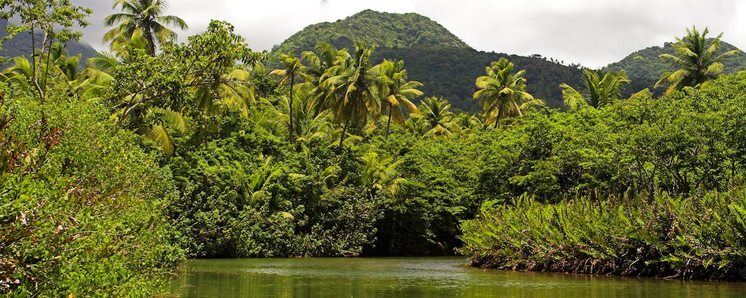 dominica-slider-indianriver