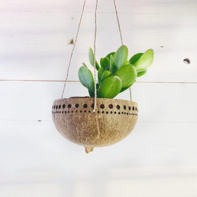 wallhanger-coconut